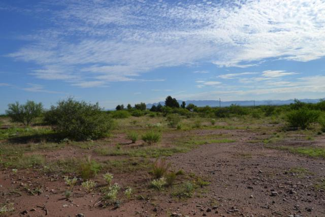 Tbd 4 Ac Frontier Road, Mcneal, AZ 85617 (MLS #164215) :: Service First Realty