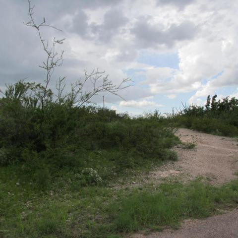 Lot 13 12th St, Tombstone, AZ 85638 (MLS #164250) :: Service First Realty
