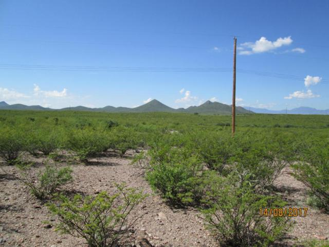 7.2 Acres Diamond Acres, Tombstone, AZ 85638 (MLS #164252) :: Service First Realty