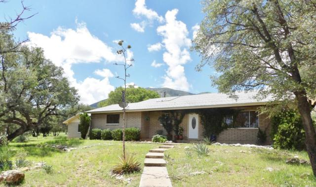 5130 E Lower Stump Canyon Road, Hereford, AZ 85615 (MLS #164263) :: Service First Realty