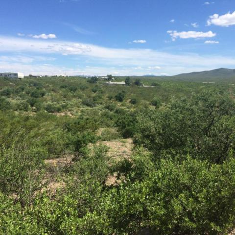 287 Tombstone Territory Estate  #1, Tombstone, AZ 85638 (#164351) :: Long Realty Company