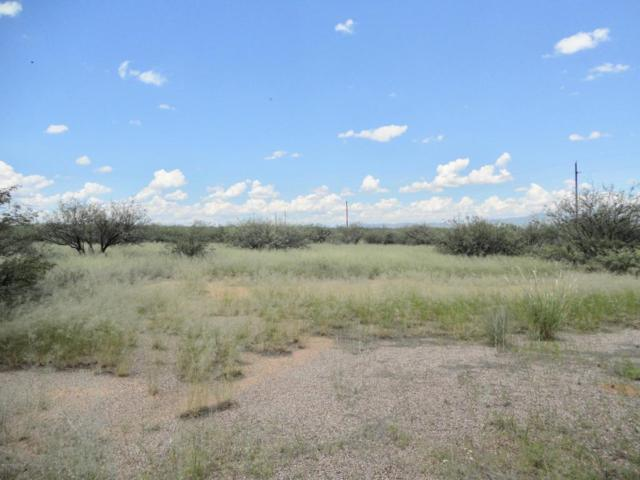 11350 S Rock And Roll Road, Hereford, AZ 85615 (MLS #164385) :: Service First Realty