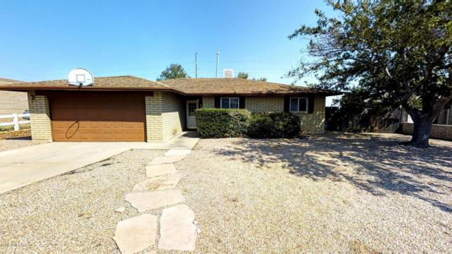 1317 Ocotillo Drive, Sierra Vista, AZ 85635 (MLS #164537) :: Service First Realty