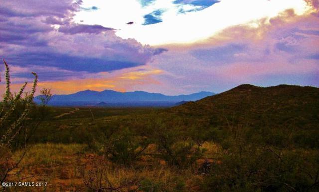 220 Acres Main Chance, Tombstone, AZ 85638 (#164561) :: Long Realty Company