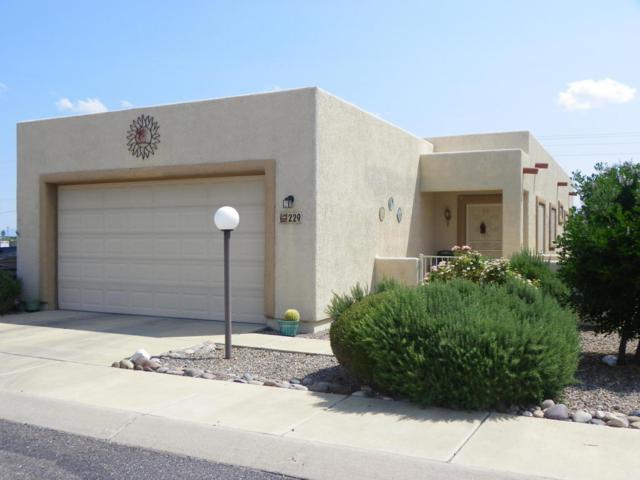 229 S Taylors Trail, Sierra Vista, AZ 85635 (MLS #164569) :: Service First Realty