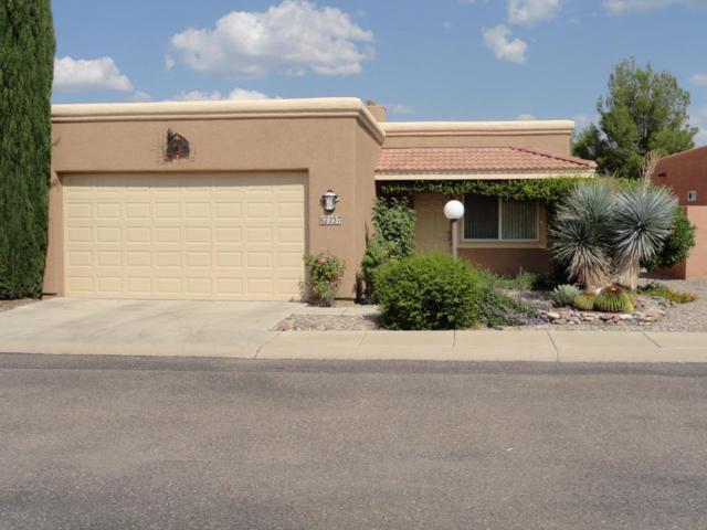 257 S Taylors Trail, Sierra Vista, AZ 85635 (MLS #164576) :: Service First Realty
