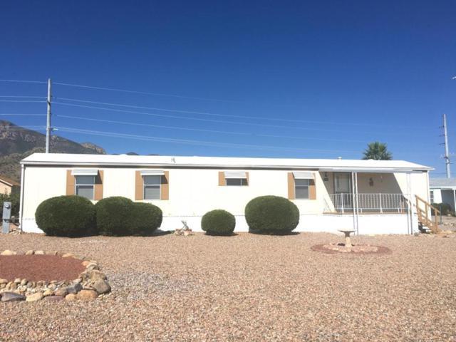 7262 S Roundup Road, Hereford, AZ 85615 (#164582) :: The Josh Berkley Team