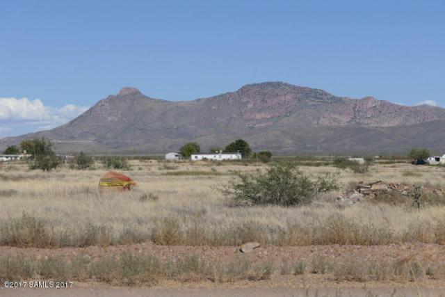 Xxx E Loma Vista Drive, Douglas, AZ 85607 (MLS #164886) :: Service First Realty