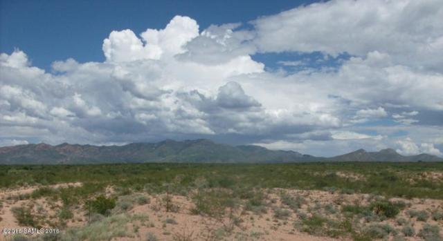 Tbd S Shiloh Ranch Road, Hereford, AZ 85615 (MLS #164974) :: Service First Realty