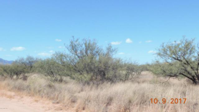 Lot 019m S Rio Santiago, Hereford, AZ 85615 (MLS #164984) :: Service First Realty