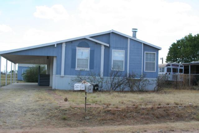 9518 E Joy Avenue, Hereford, AZ 85615 (MLS #165035) :: Service First Realty