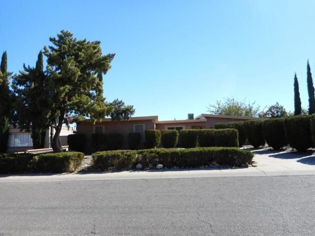 1109 Via Cabrillo, Sierra Vista, AZ 85635 (MLS #165046) :: Service First Realty