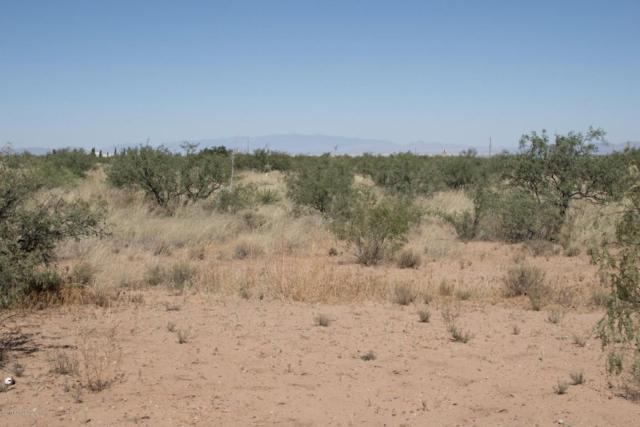 Tbd W Pearce Road, Pearce, AZ 85625 (MLS #165105) :: Service First Realty