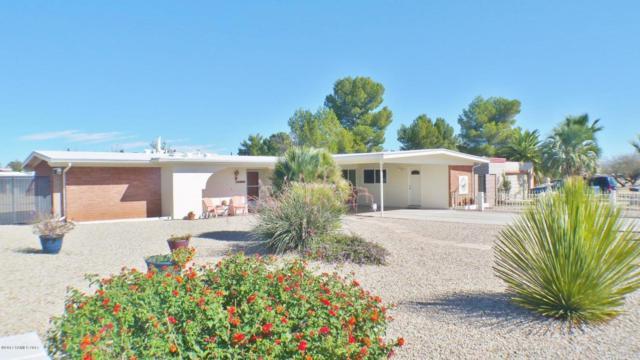1980 Viola Drive, Sierra Vista, AZ 85635 (#165340) :: The Josh Berkley Team
