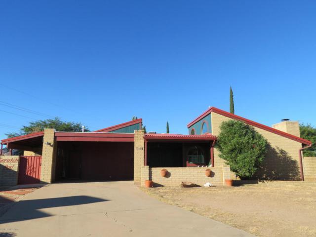 653 Pampas Place, Sierra Vista, AZ 85635 (#165341) :: The Josh Berkley Team