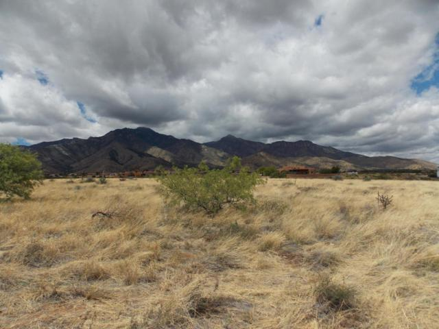 Tbd Lot 43 Hackney Drive, Hereford, AZ 85615 (MLS #165353) :: Service First Realty