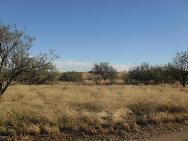 13550 E Beatty Ranch Road, Sonoita, AZ 85637 (MLS #165475) :: Service First Realty