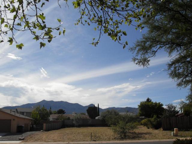 1410 Wildflower Drive, Sierra Vista, AZ 85635 (MLS #165476) :: Service First Realty