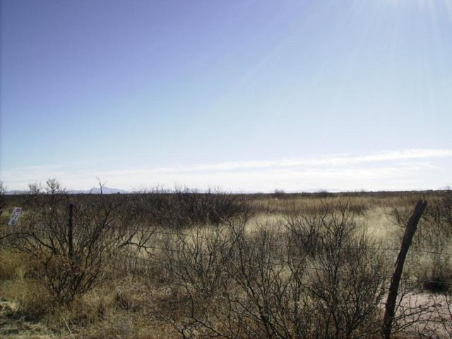 Address Not Published, Mcneal, AZ 85617 (MLS #165550) :: Service First Realty