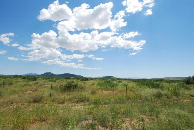 0000 Hwy 181, Pearce, AZ 85625 (MLS #165586) :: Service First Realty