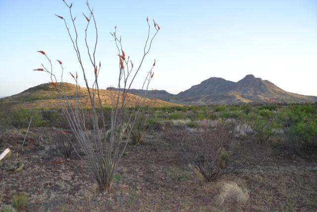 Tbd N Lobo Road 23.01 Acres, Douglas, AZ 85607 (#165604) :: Long Realty Company