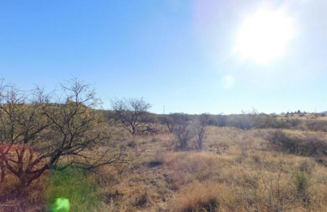 15611 S Lovell Rd, Benson, AZ 85602 (MLS #165666) :: Service First Realty