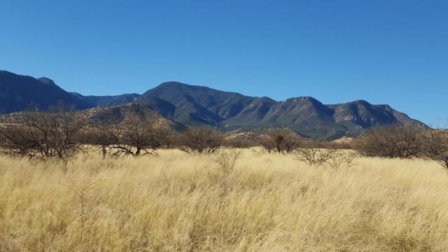 Tbd E Redrock Drive, Sierra Vista, AZ 85650 (MLS #165693) :: Service First Realty