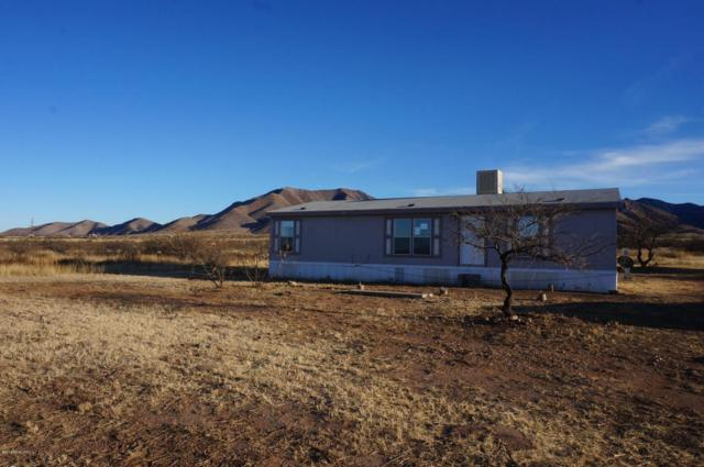 4955 E Silk Wind Boulevard, Dragoon, AZ 85609 (MLS #165803) :: Service First Realty