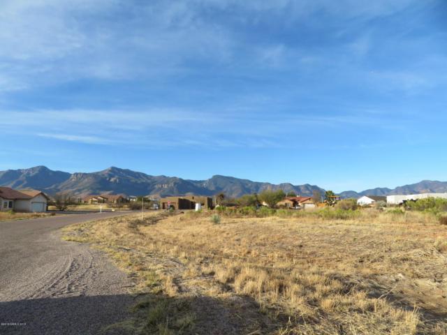108 E Wisteria Court, Sierra Vista, AZ 85650 (MLS #165857) :: Service First Realty
