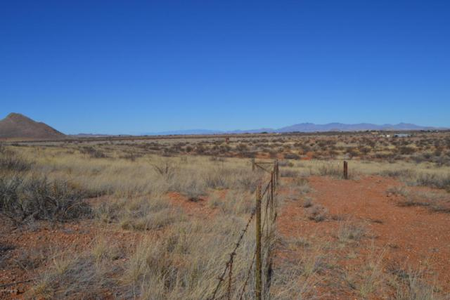 Tbd 40 Ac Lot 154 Ash Creek Ranch, Pearce, AZ 85625 (MLS #165910) :: Service First Realty