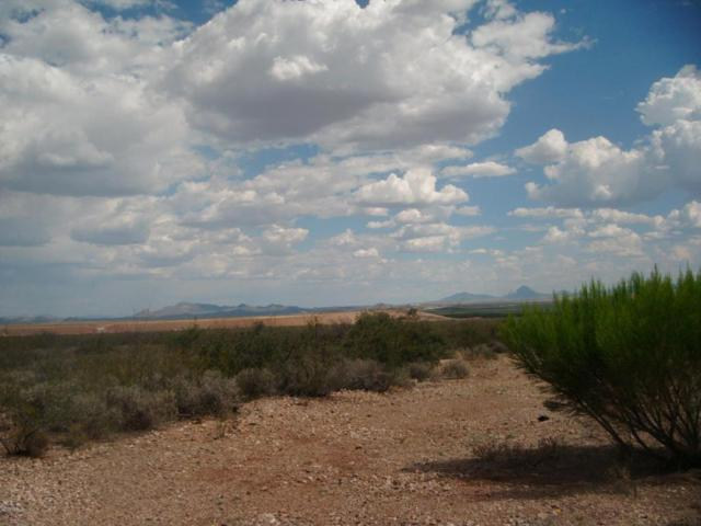 Tbd N Central Highway, Mcneal, AZ 85617 (MLS #165917) :: Service First Realty