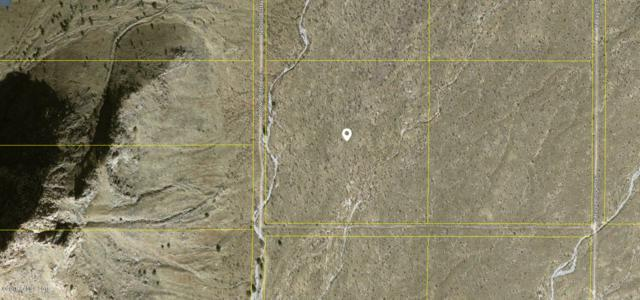 Tbd N Owl Butte Trail, Portal, AZ 85632 (#165926) :: The Josh Berkley Team