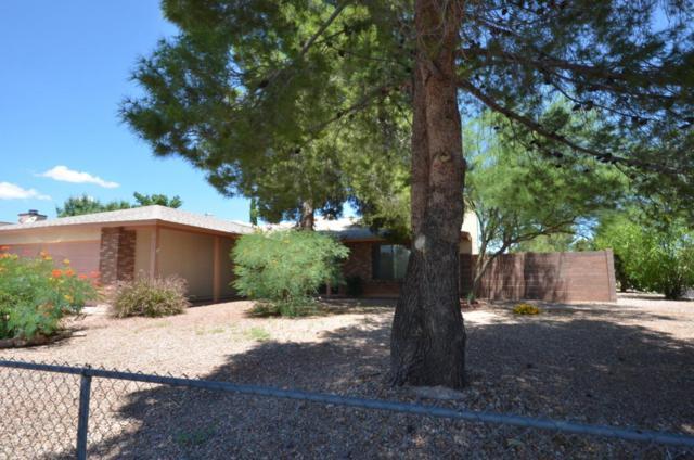 5155 Calle Vieja, Sierra Vista, AZ 85635 (MLS #165992) :: Service First Realty