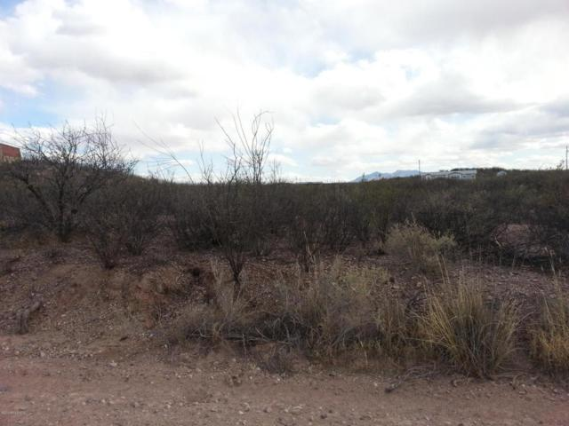 Tbd N Willcox Road, Huachuca City, AZ 85616 (MLS #166154) :: Service First Realty