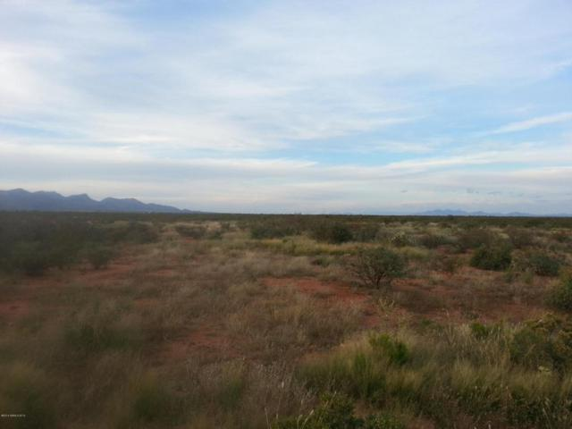 Tbd E Valley View Trail, Huachuca City, AZ 85616 (MLS #166167) :: Service First Realty