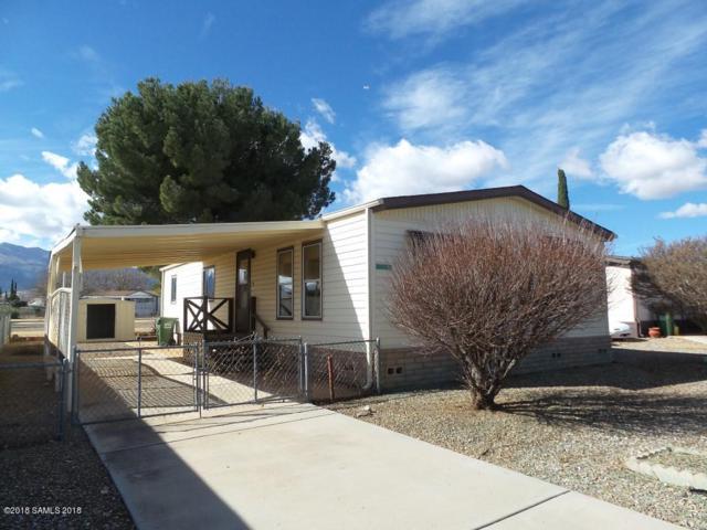 3820 S Inca Dove Place, Sierra Vista, AZ 85650 (#166174) :: The Josh Berkley Team