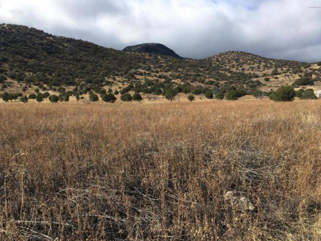 Tbd E Moonrise Trail, Hereford, AZ 85615 (#166180) :: The Josh Berkley Team