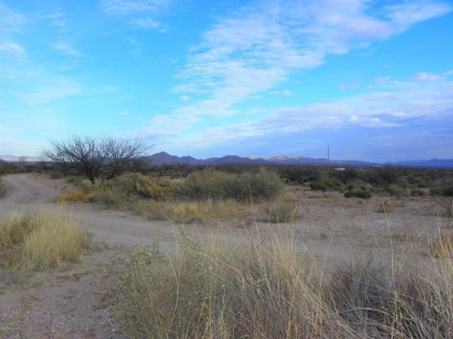 2416 N Frost Lane, Huachuca City, AZ 85616 (MLS #166320) :: Service First Realty