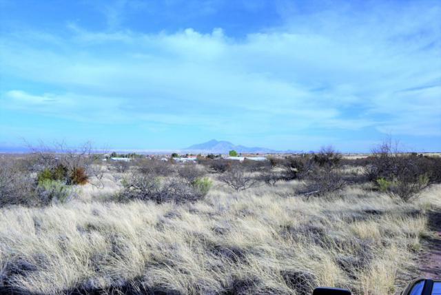 Tbd Lot 12K, Hereford, AZ 85615 (#166397) :: Long Realty Company