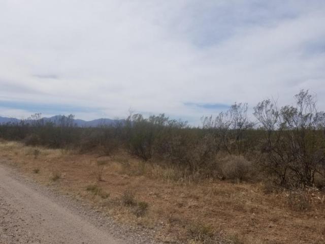 Tbd Wind Sock, Huachuca City, AZ 85616 (#166404) :: Long Realty Company