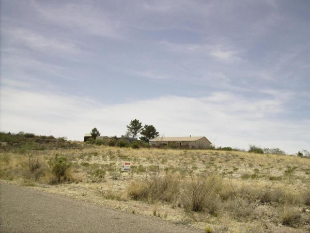 119 Gila Drive, Tombstone, AZ 85638 (MLS #166447) :: Service First Realty