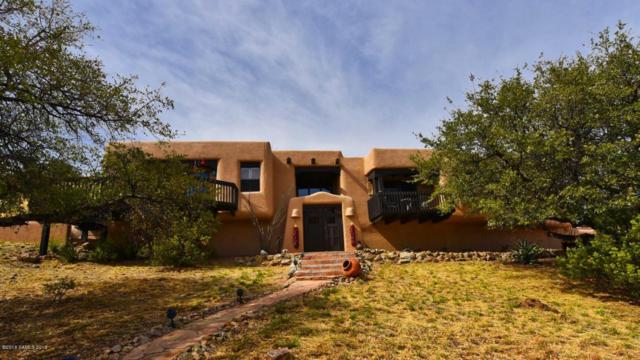 4785 E Dead Bear Draw, Hereford, AZ 85615 (MLS #166468) :: Service First Realty