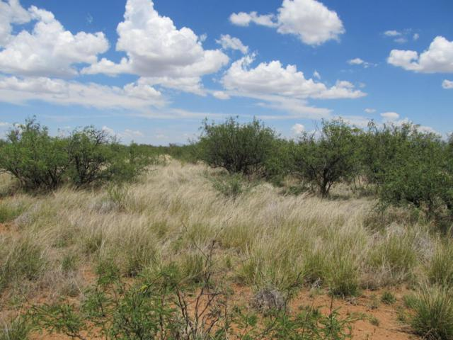 Lot 18 D Chula Vista Estates, Huachuca City, AZ 85616 (#166645) :: Long Realty Company