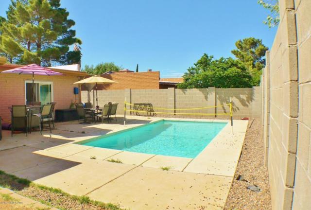 1200 Terra Drive, Sierra Vista, AZ 85635 (MLS #166692) :: Service First Realty