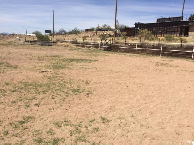 Address Not Published, Tombstone, AZ 85638 (MLS #166743) :: Service First Realty