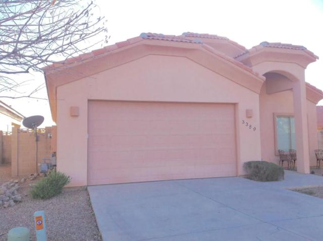 3389 N Camino Perilla, Douglas, AZ 85607 (#166777) :: Long Realty Company