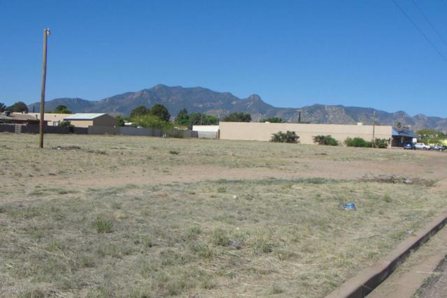 230 Myer Drive, Sierra Vista, AZ 85635 (MLS #166781) :: Service First Realty