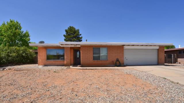 1620 Plaza Canero, Sierra Vista, AZ 85635 (MLS #166809) :: Service First Realty