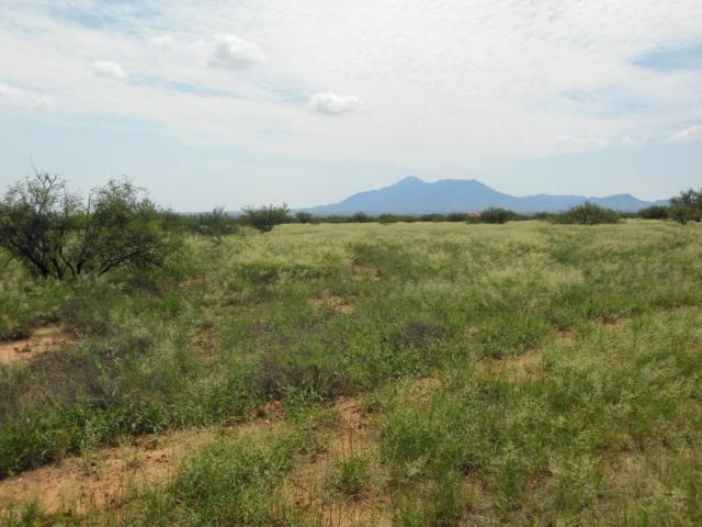 11272 E Javelina Trail, Hereford, AZ 85615 (MLS #166814) :: Service First Realty