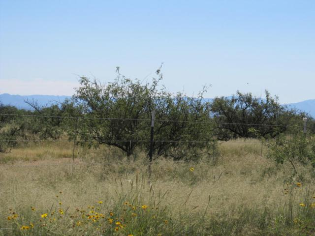 Lot 15 B Chula Vista, Huachuca City, AZ 85616 (#166849) :: Long Realty Company